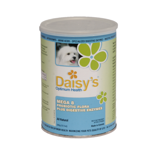 Natural Digestive Enzymes And Probiotics For Dogs